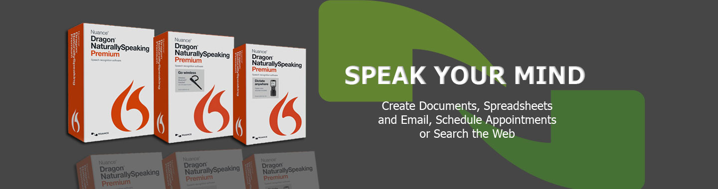dragon naturallyspeaking 11 italiano